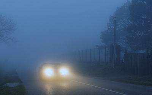 Through the Fog Website